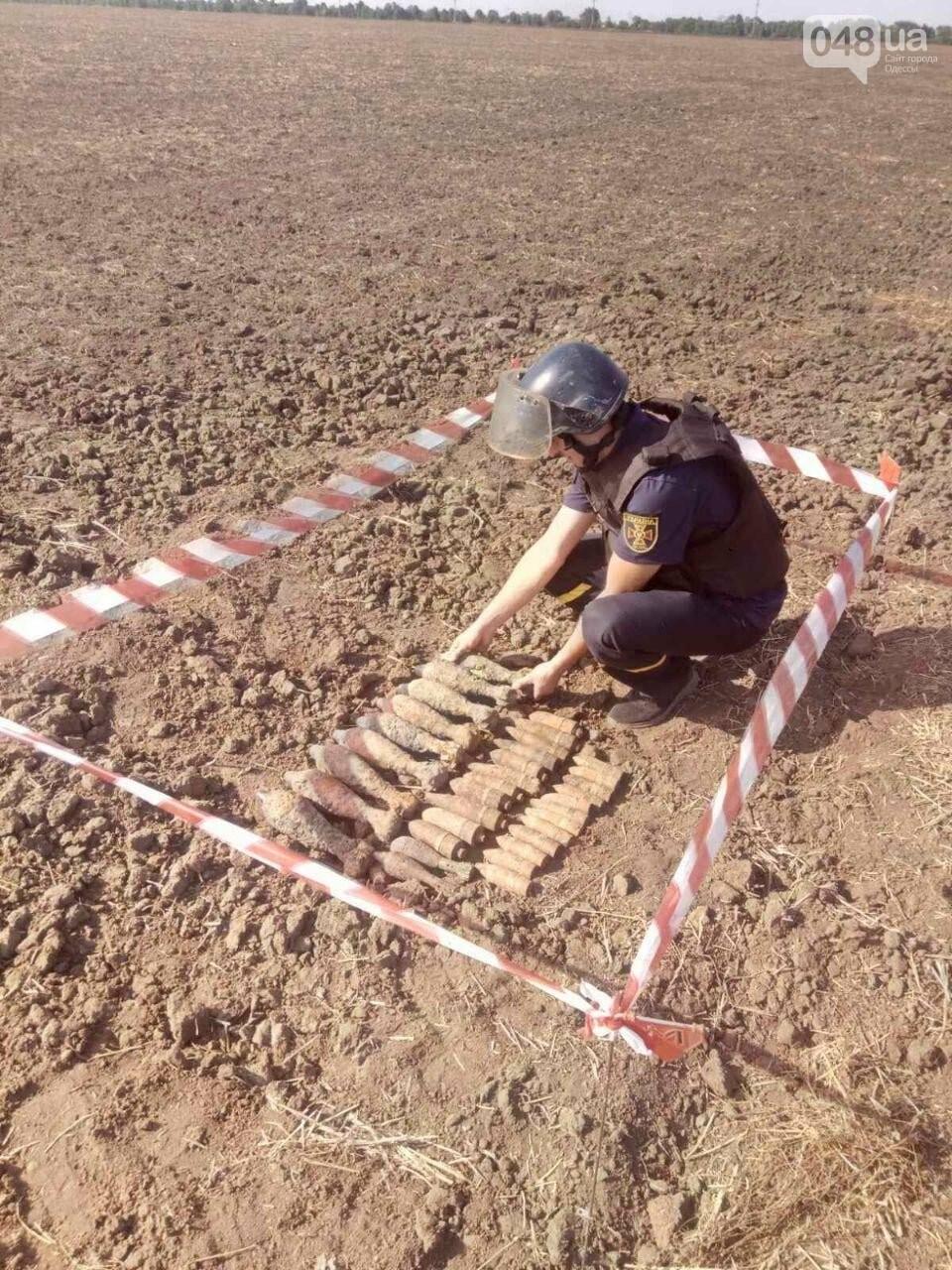 В Одесской области нашли 35 артснарядов времен Второй мировой войны,- ФОТО1