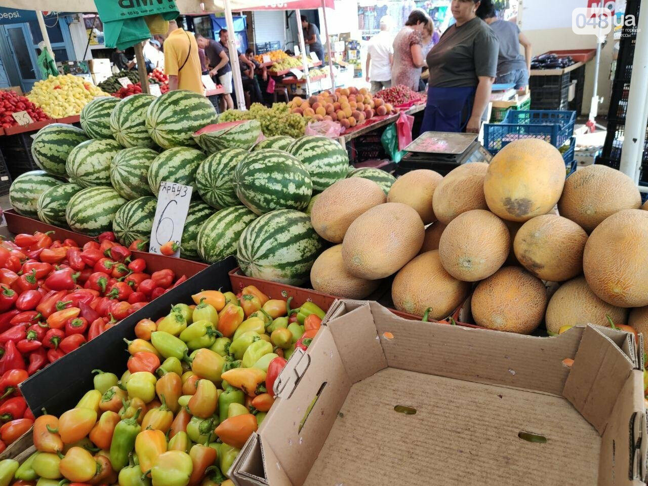 Почем в Одессе фрукты и овощи: актуальные цены Привоза в этот четверг, - ФОТО, фото-7