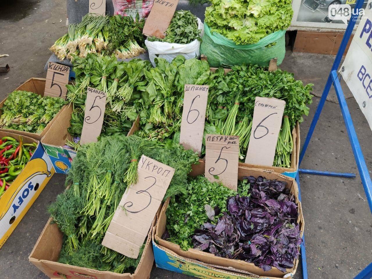 Почем в Одессе фрукты и овощи: актуальные цены Привоза в этот четверг, - ФОТО, фото-4