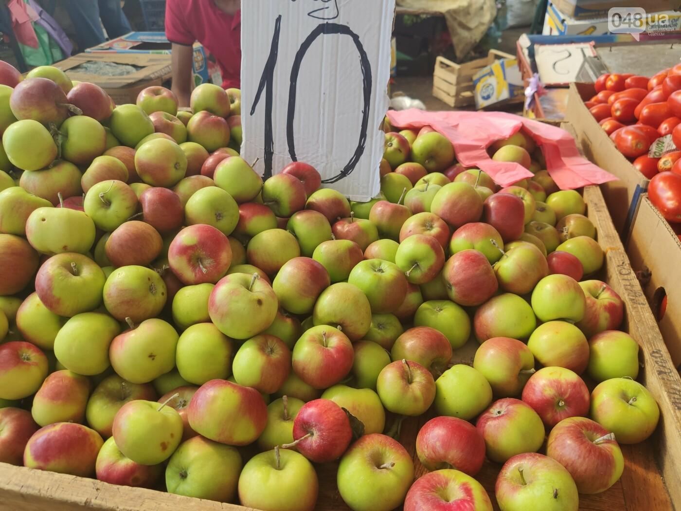 На Привозе упали цены: почем фрукты и овощи в Одессе, - ФОТОРЕПОРТАЖ, фото-9