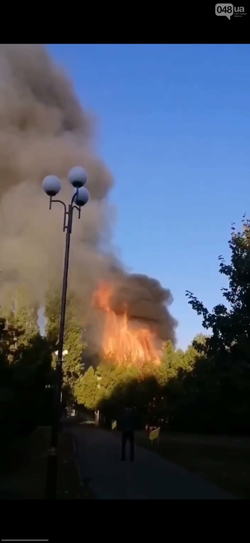 В Одесской области горел летний ресторан, - ФОТО, ВИДЕО1