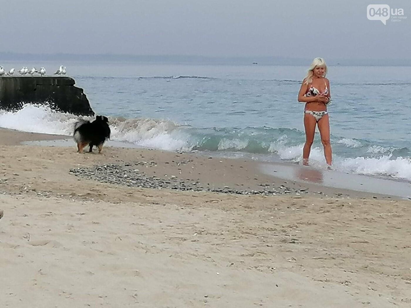 Одесситы в день тишины отправились к морю,- ФОТОРЕПОРТАЖ, фото-8