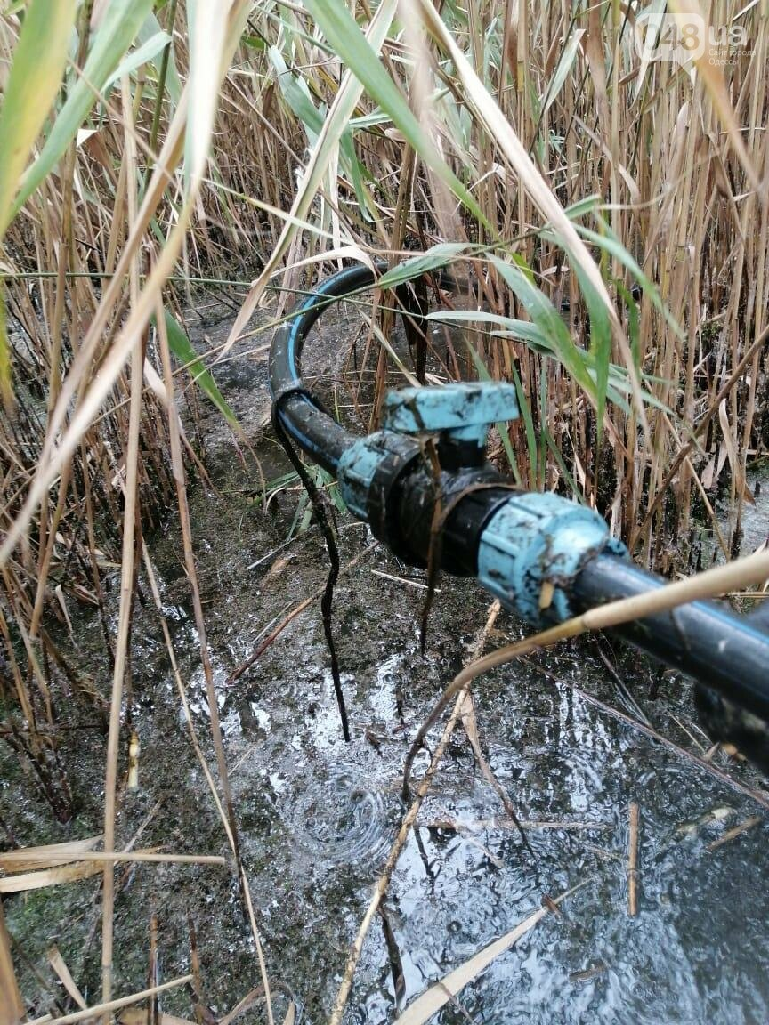 В Одесской области на дне водохранилища обнаружили спиртопровод, - ФОТО, фото-1