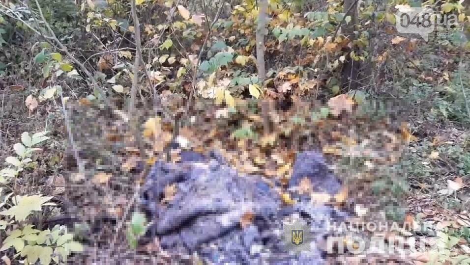 В Киевской области убили женщину из-за денег от продажи квартиры в Одессе,- ФОТО, фото-1