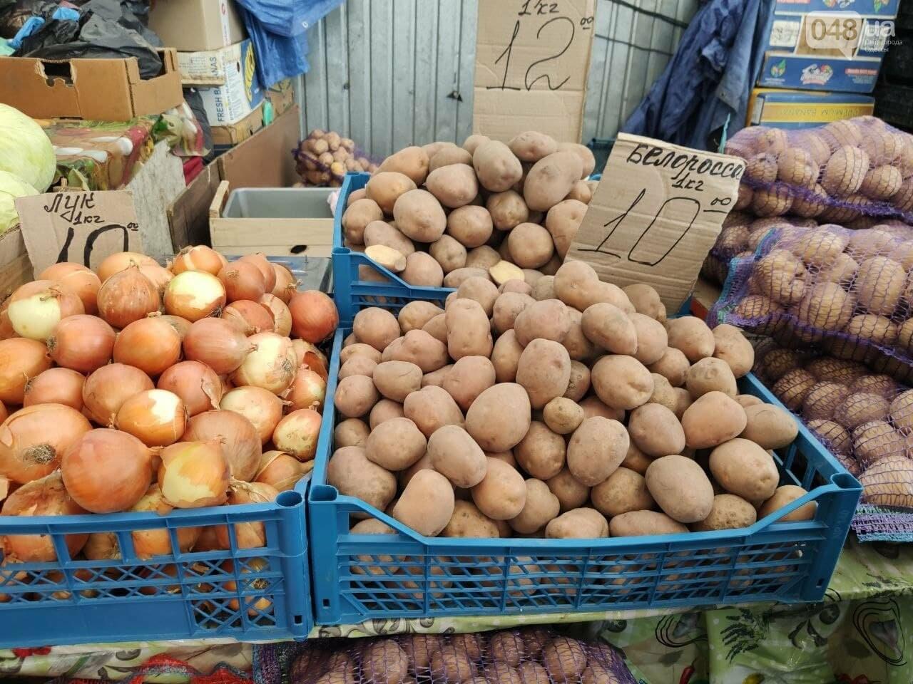 Авокадо, киви, белые грибы: сколько на одесском Привозе стоят фрукты и овощи, - ФОТО, фото-2