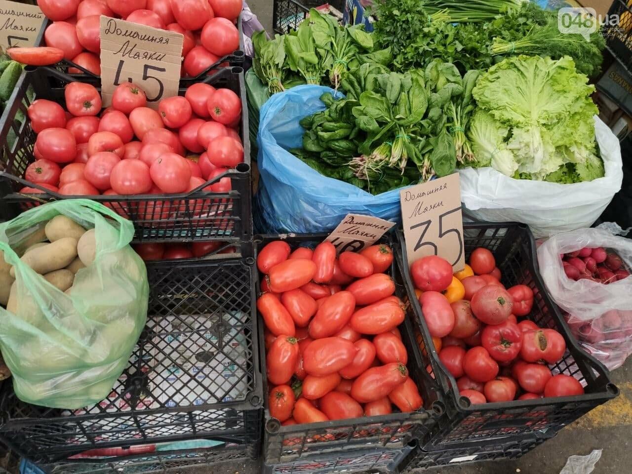 Авокадо, киви, белые грибы: сколько на одесском Привозе стоят фрукты и овощи, - ФОТО, фото-1