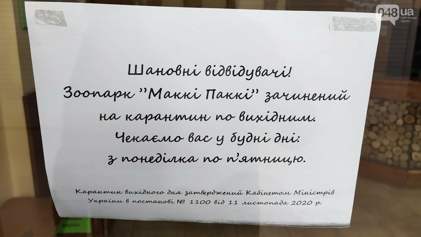 Карантин выходного дня в Одессе и Сити-Центр, - ФОТОРЕПОРТАЖ , фото-19, ФОТО: Александр Жирносенко