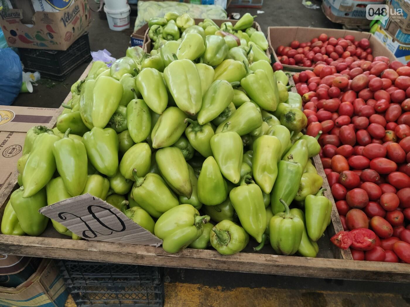 Виноград, мандарины, редис: сколько на одесском Привозе стоят фрукты и овощи, - ФОТО, фото-1