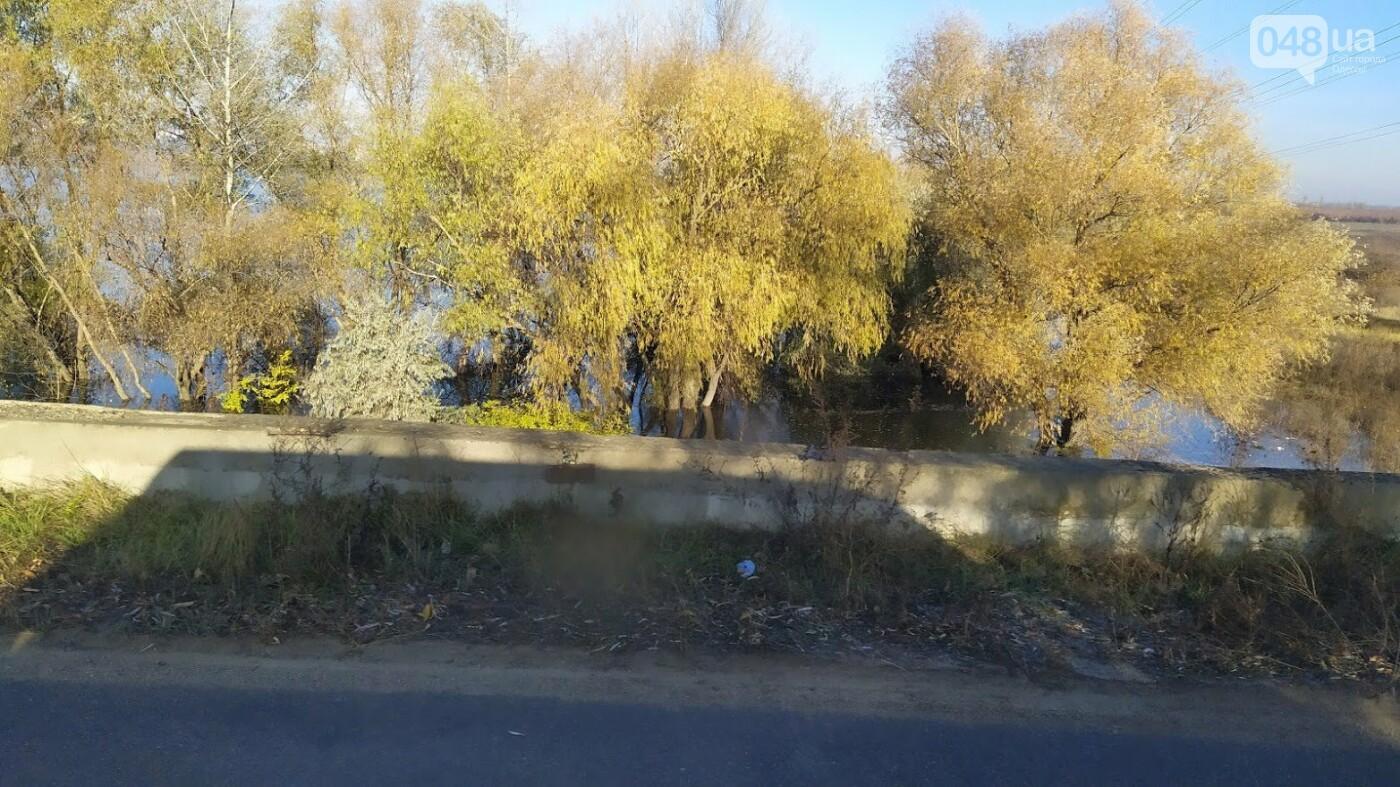 Затопленные, деревья и дороги: в Одесской области водохранилище вышло из берегов, - ФОТО, фото-21, ФОТО: Александр Жирносенко