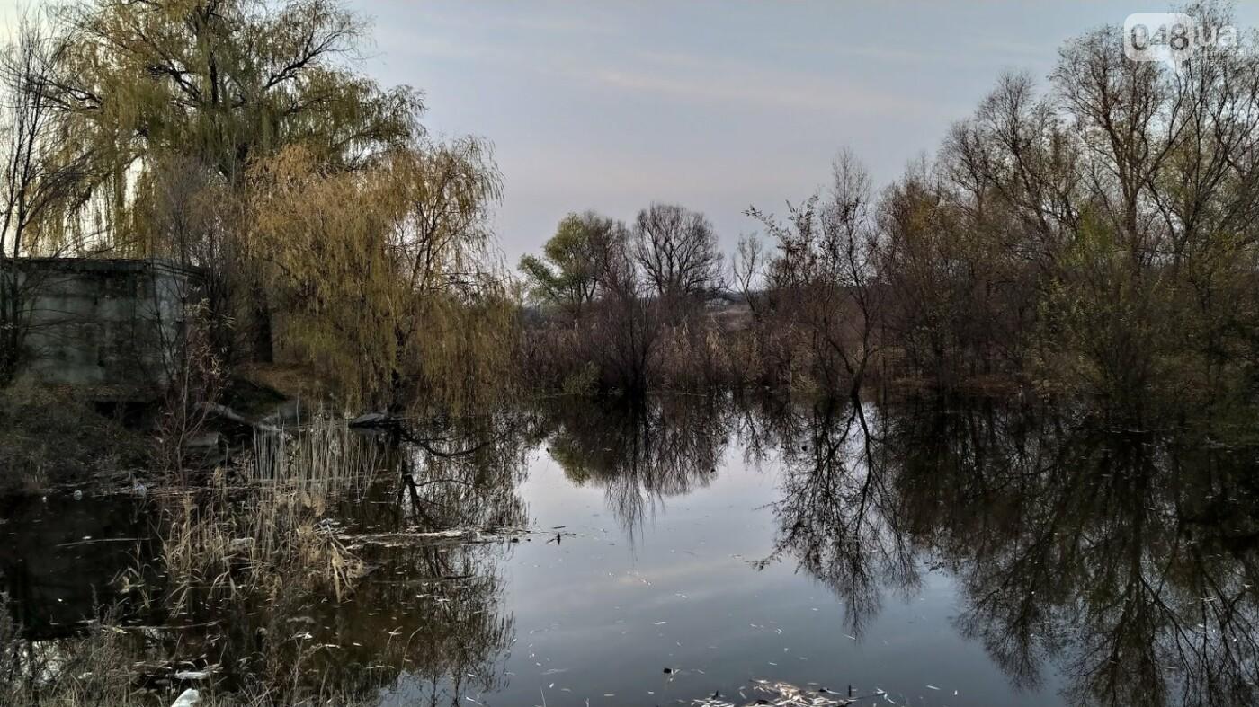 Затопленные, деревья и дороги: в Одесской области водохранилище вышло из берегов, - ФОТО, фото-1, ФОТО: Александр Жирносенко