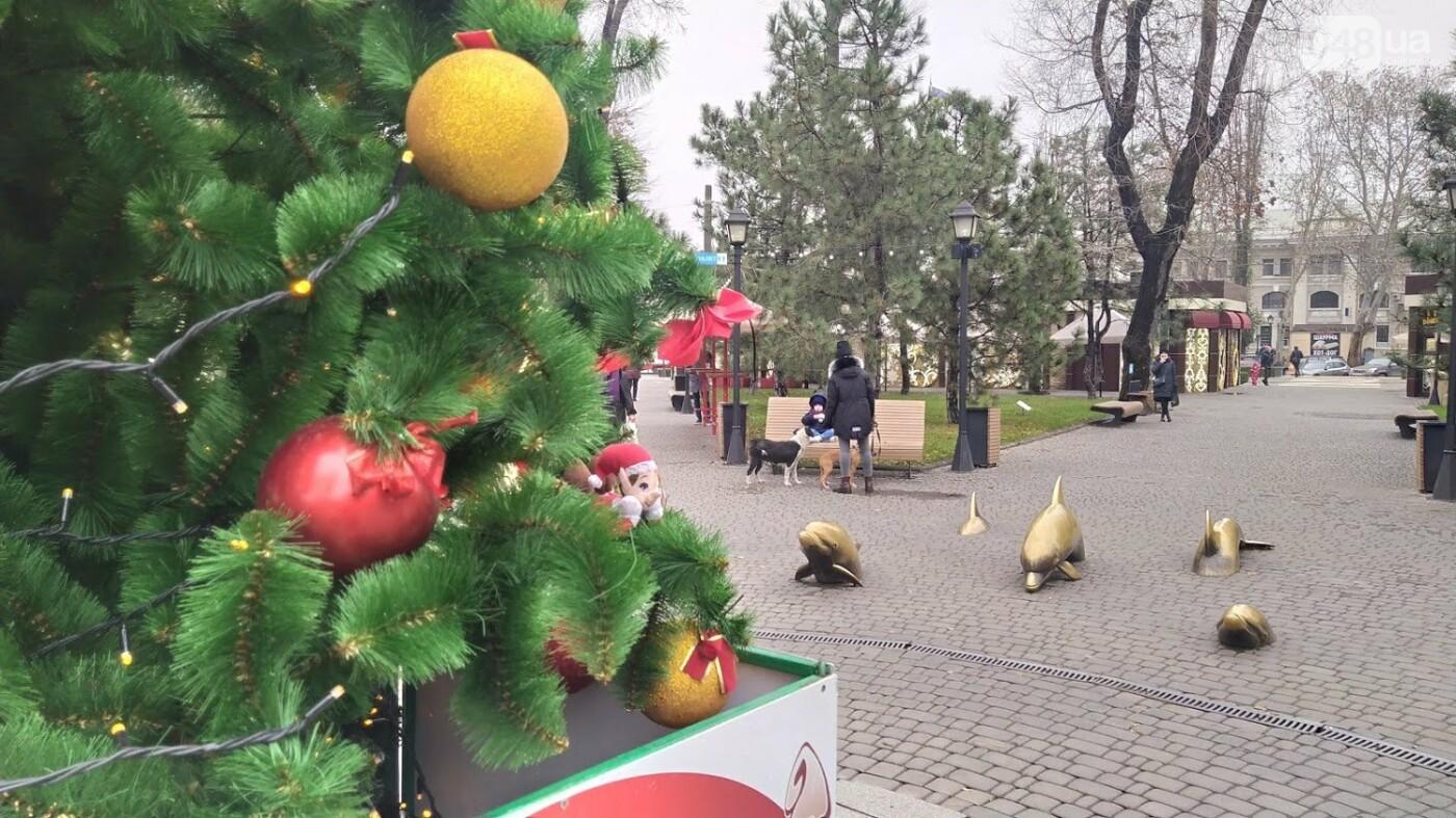 В Одессе установили домик Санты, - ФОТО, фото-10, ФОТО: Александр Жирносенко.