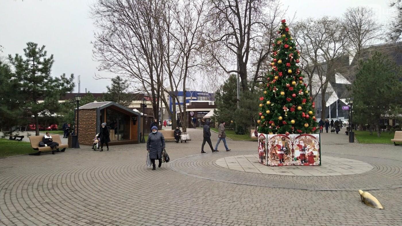 В Одессе установили домик Санты, - ФОТО, фото-8, ФОТО: Александр Жирносенко.