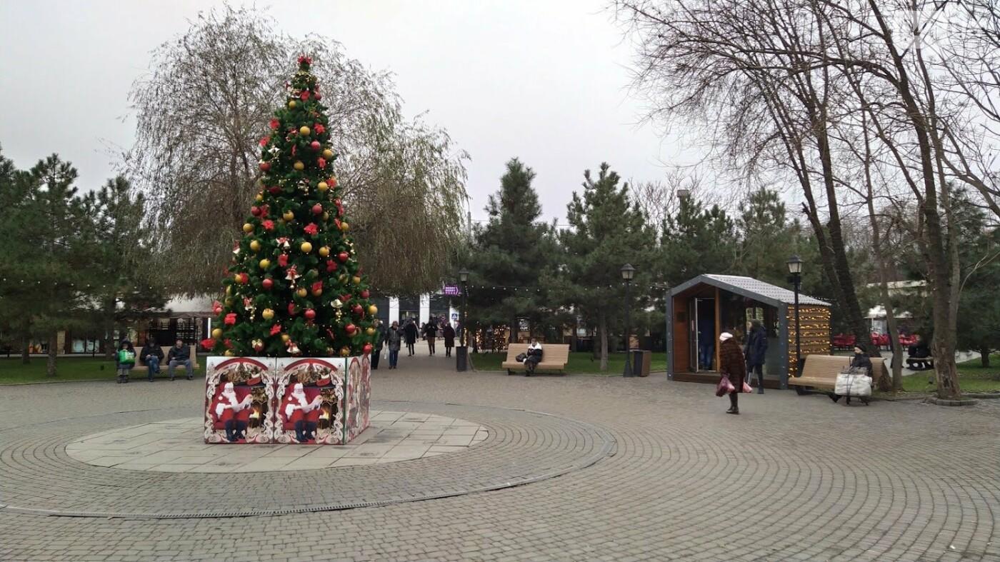 В Одессе установили домик Санты, - ФОТО, фото-12, ФОТО: Александр Жирносенко.