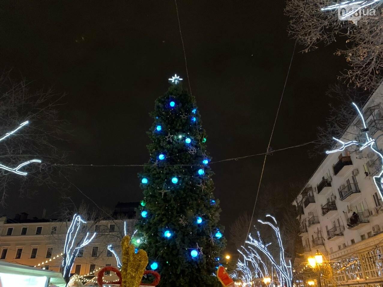 Фоторепортаж: В Одессе зажгли главную елку города, - ФОТО, ВИДЕО, фото-20