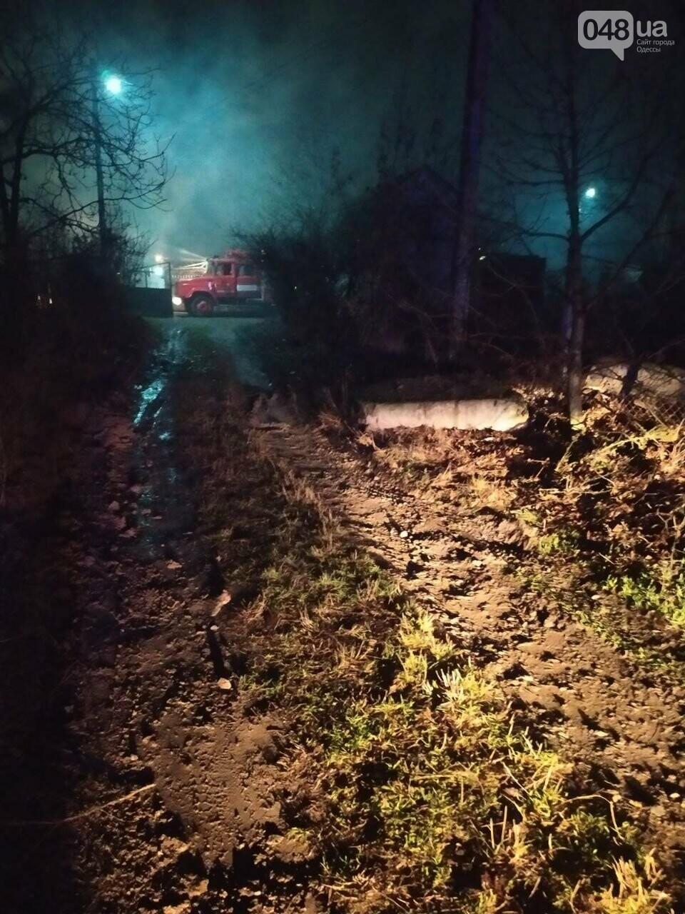 Новогодняя гирлянда могла стать причиной пожара: в Одесской области сгорел дом, - ФОТО, фото-2