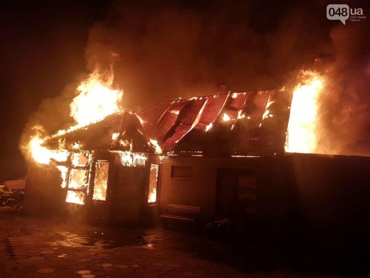 Новогодняя гирлянда могла стать причиной пожара: в Одесской области сгорел дом, - ФОТО, фото-1