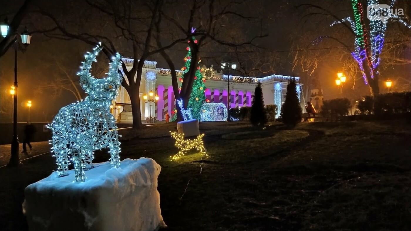 Новогодние огни Потемкинской лестницы и Стамбульского парка в Одессе, - ФОТОРЕПОРТАЖ, фото-20, ФОТО: Александр Жирносенко