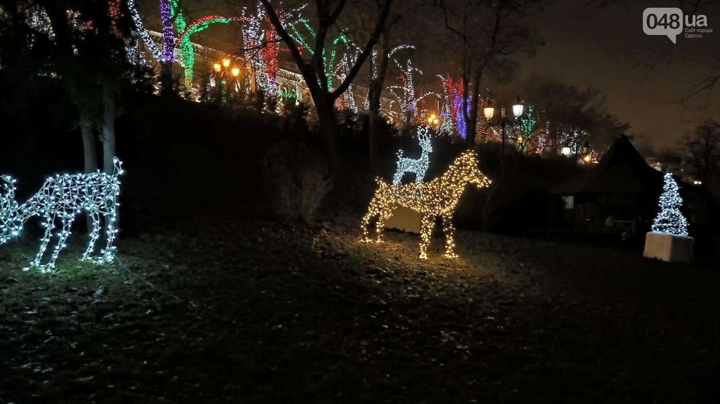 Новогодние огни Потемкинской лестницы и Стамбульского парка в Одессе, - ФОТОРЕПОРТАЖ, фото-14, ФОТО: Александр Жирносенко