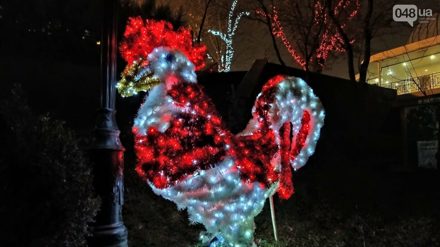 Новогодние огни Потемкинской лестницы и Стамбульского парка в Одессе, - ФОТОРЕПОРТАЖ, фото-10, ФОТО: Александр Жирносенко
