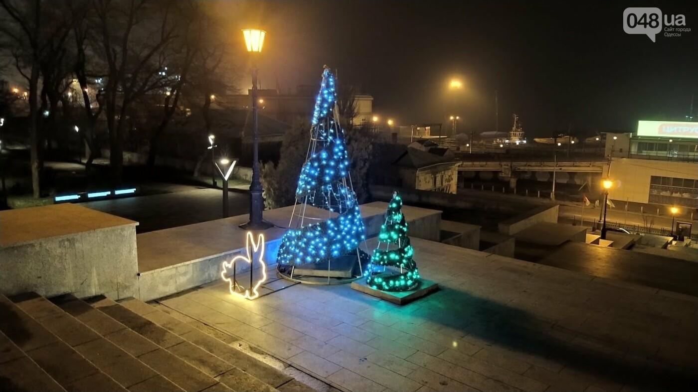 Новогодние огни Потемкинской лестницы и Стамбульского парка в Одессе, - ФОТОРЕПОРТАЖ, фото-7, ФОТО: Александр Жирносенко
