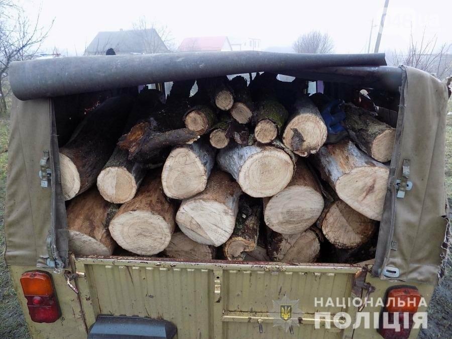 """В Одесской области задержали """"чёрных"""" лесорубов , - ФОТО, фото-33"""