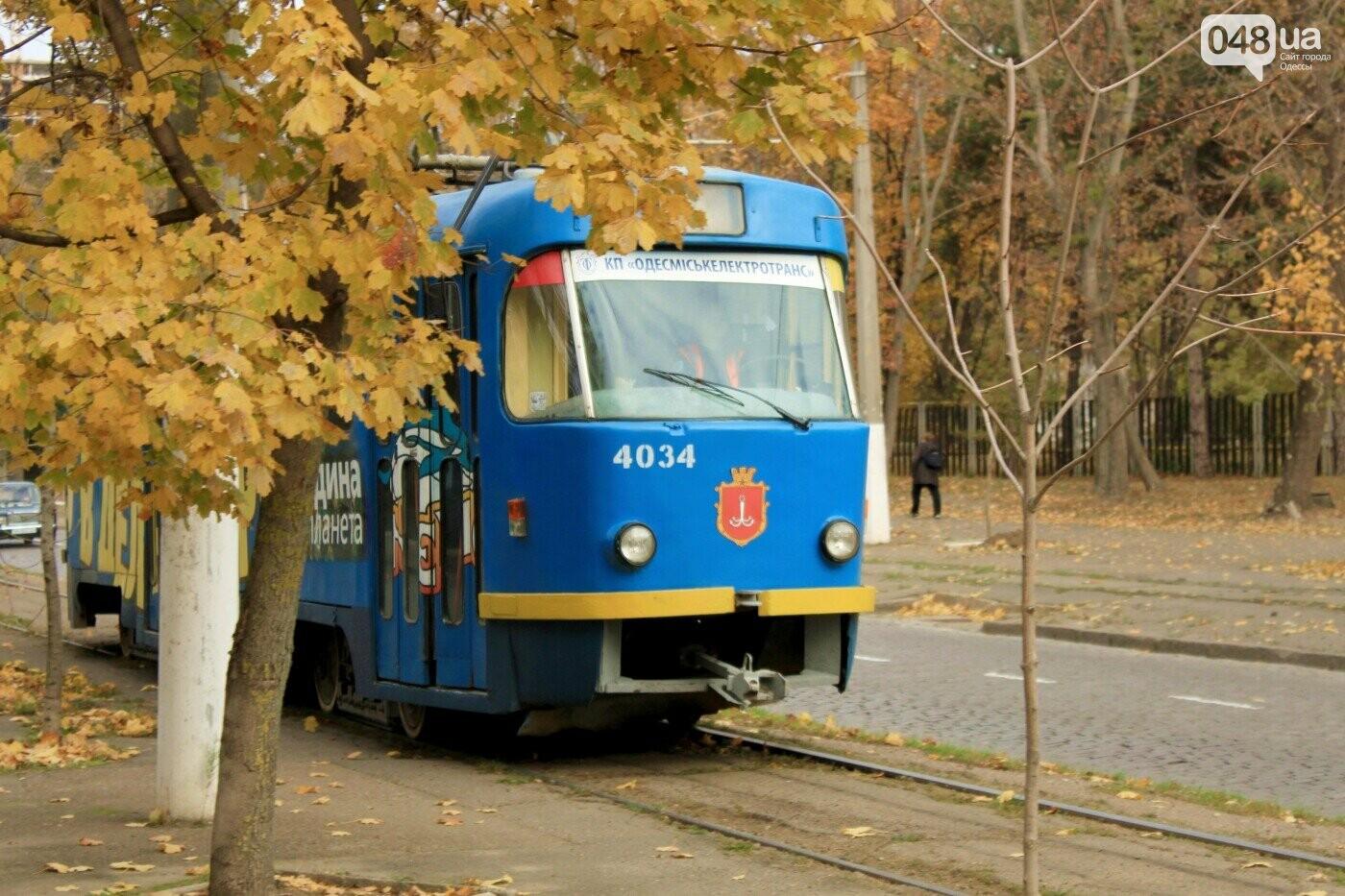 Топ-фото: Двенадцать мгновений 2020 года в Одессе,- ФОТОРЕПОРТАЖ, фото-54