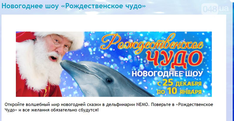 Локдаун не для всех: В Одессе работает дельфинарий, - ФОТО, фото-9