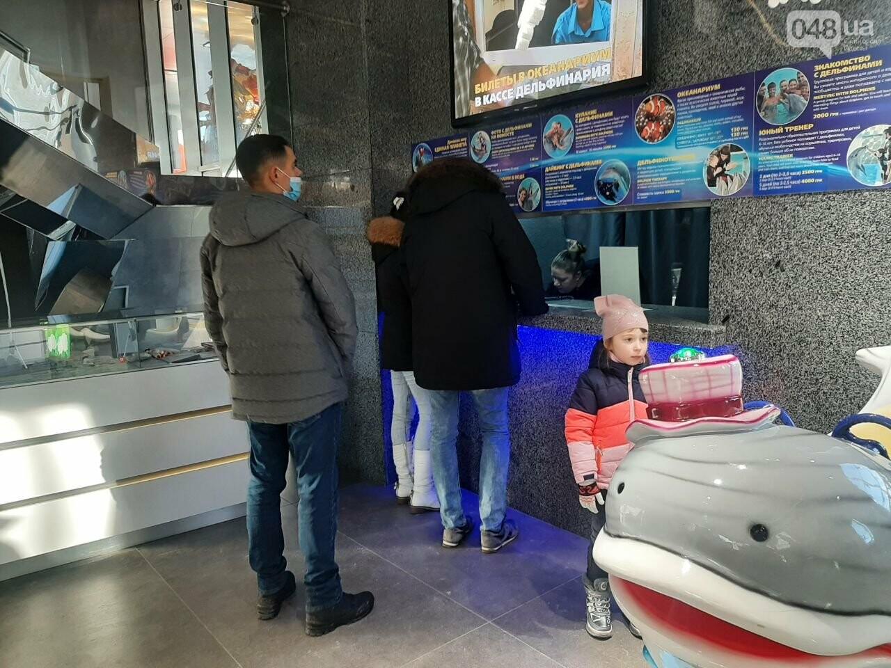 Локдаун не для всех: В Одессе работает дельфинарий, - ФОТО, фото-6