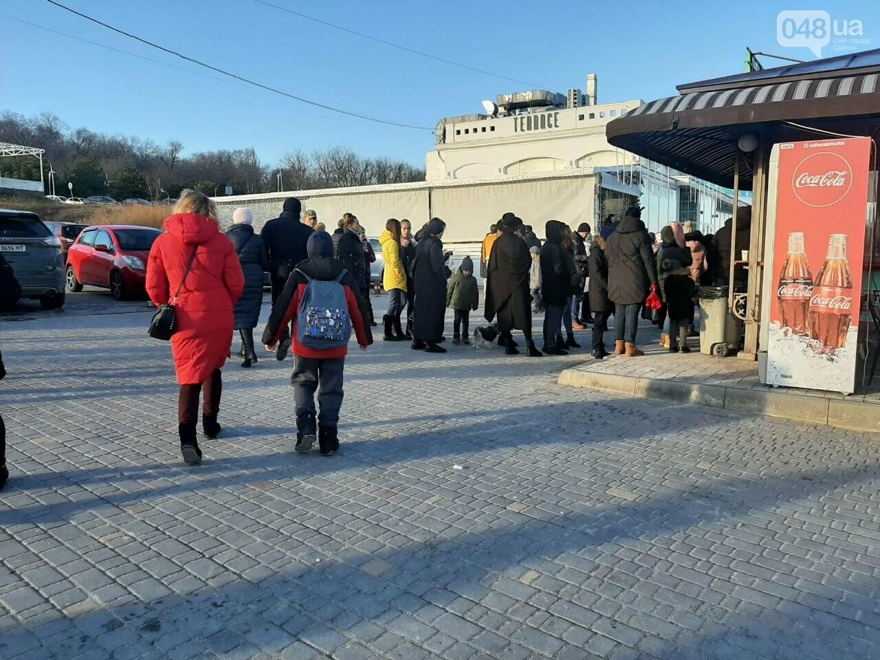 Локдаун не для всех: В Одессе работает дельфинарий, - ФОТО, фото-2