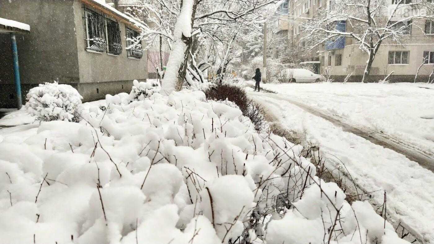 Одессу накрыло снегом: 20 кадров с заснеженных улиц города, - ФОТОРЕПОРТАЖ, фото-3, ФОТО: Александр Жирносенко