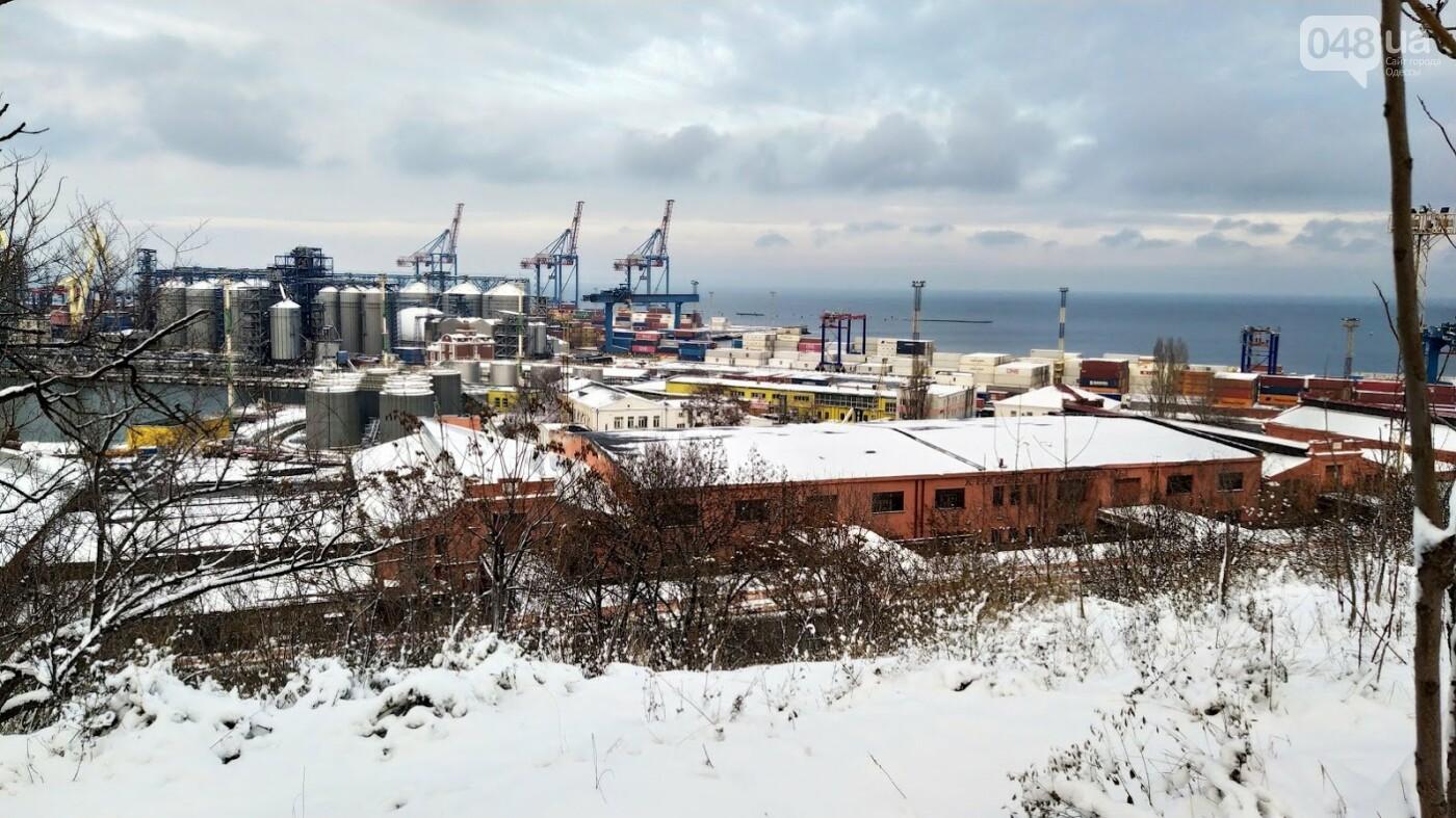 Как во время снегопада работал Одесский порт, - ФОТО, фото-3, ФОТО: Александр Жирносенко