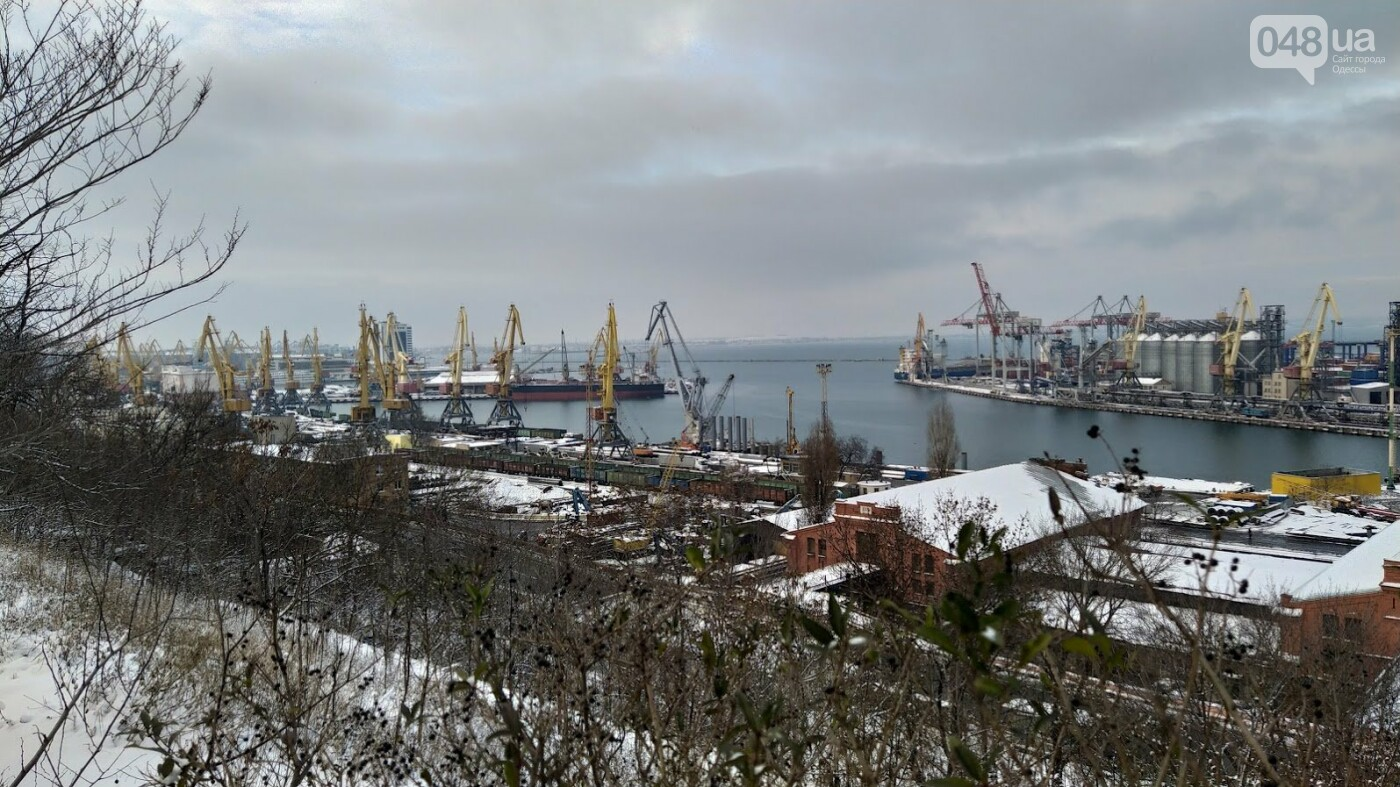 Как во время снегопада работал Одесский порт, - ФОТО, фото-4, ФОТО: Александр Жирносенко