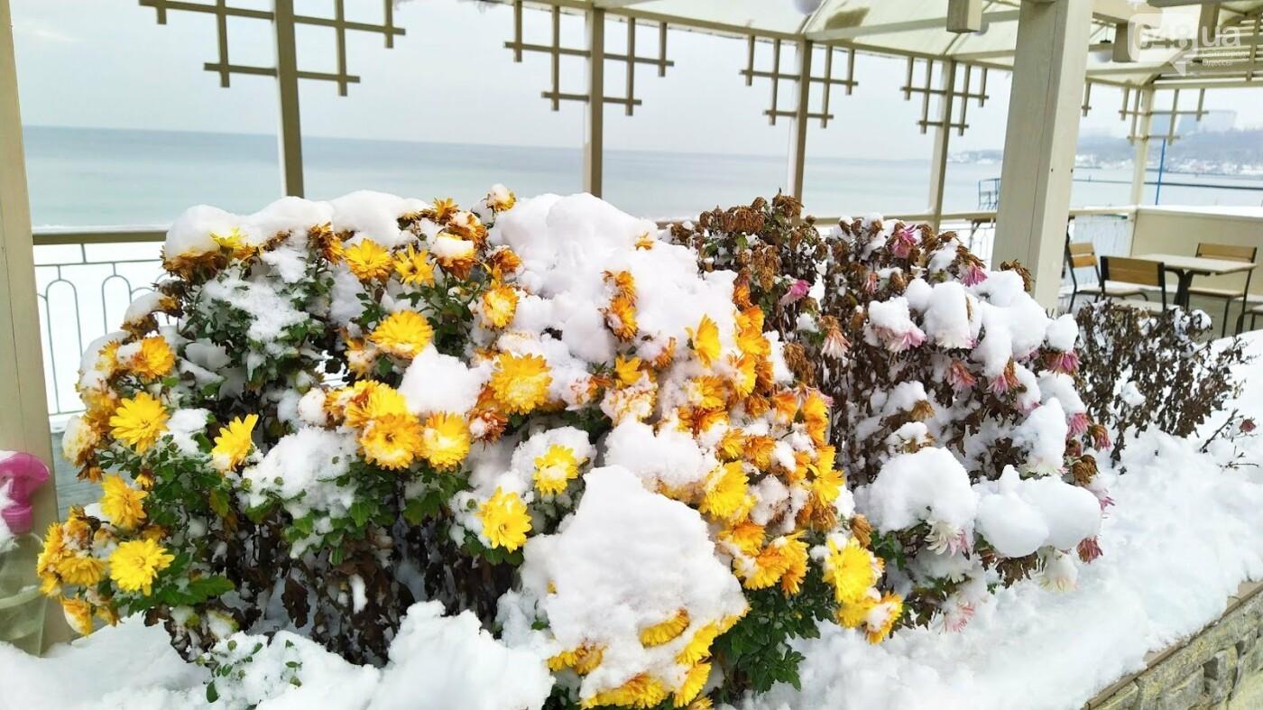 Белые пляжи и зимняя набережная: как одесское побережье замело снегом, - ФОТОРЕПОРТАЖ, фото-18, ФОТО: Александр Жирносенко