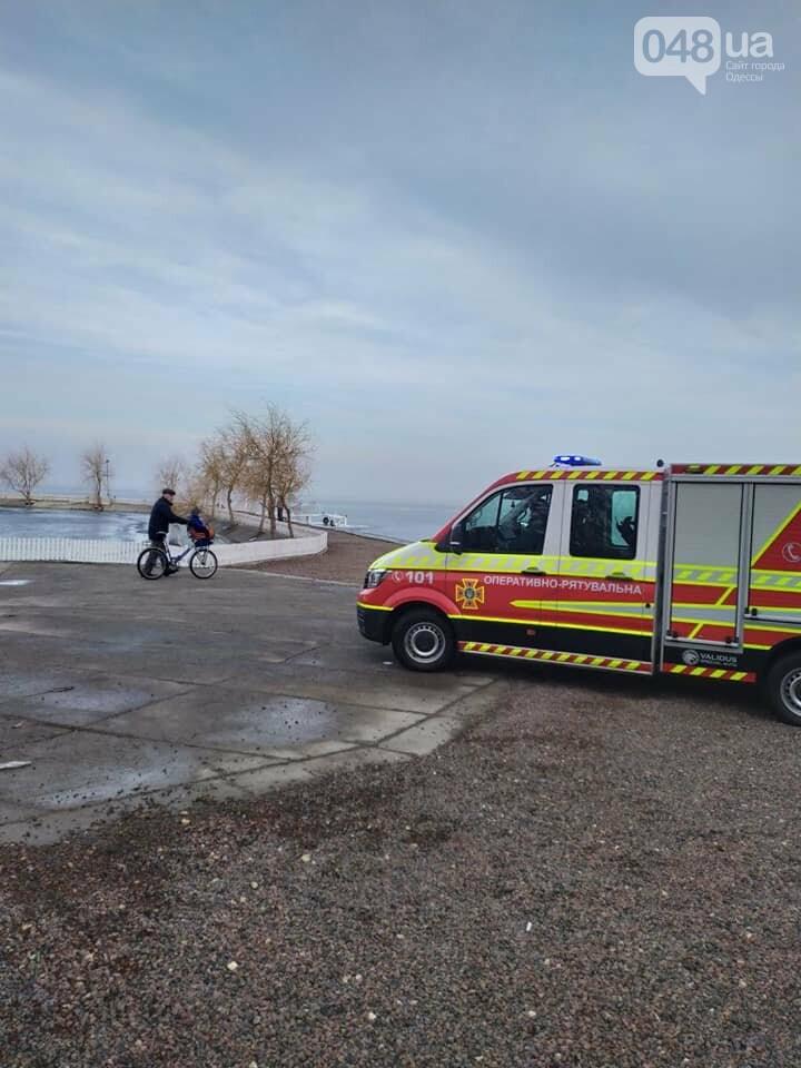 В Одесской области дети решили погулять по тонкому льду, - ФОТО1