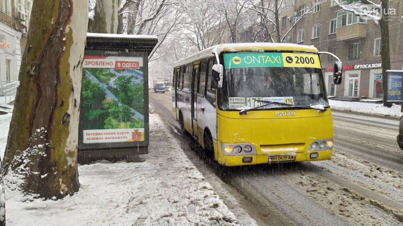 Снегопад в Одессе: как ходит общественный транспорт в городе, - ФОТО, фото-13, ФОТО: Александр Жирносенко