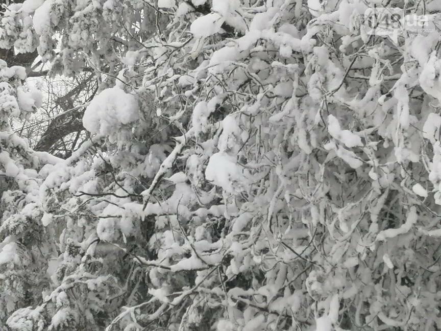Села Одесской области заметает снегом, на трассе переметы,- ФОТОРЕПОРТАЖ, фото-12