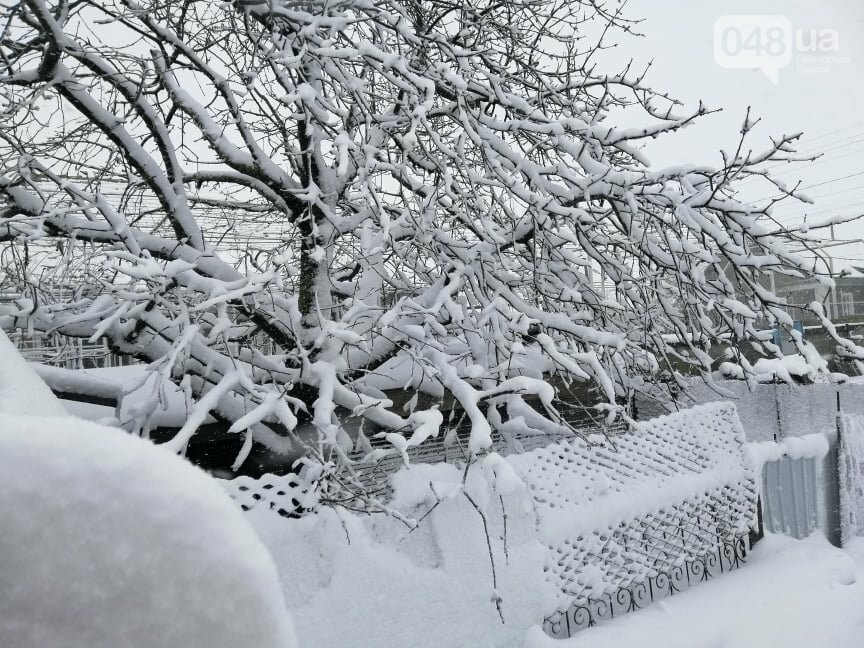 Села Одесской области заметает снегом, на трассе переметы,- ФОТОРЕПОРТАЖ, фото-10