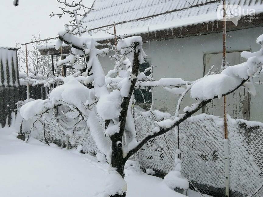 Села Одесской области заметает снегом, на трассе переметы,- ФОТОРЕПОРТАЖ, фото-8