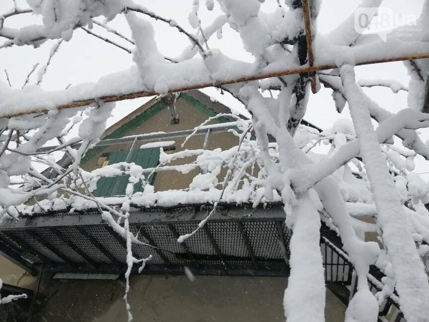 Села Одесской области заметает снегом, на трассе переметы,- ФОТОРЕПОРТАЖ, фото-7