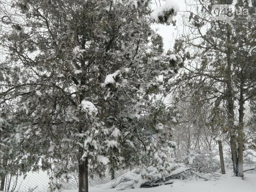 Села Одесской области заметает снегом, на трассе переметы,- ФОТОРЕПОРТАЖ, фото-5