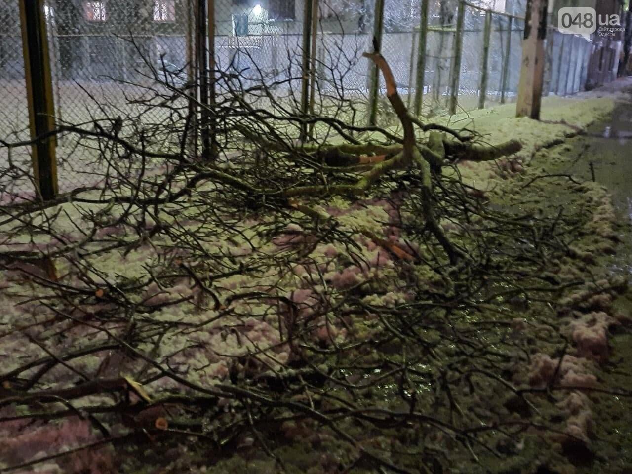 Едва не стала роковой: в Одессе под весом снега обломилась..., фото-33
