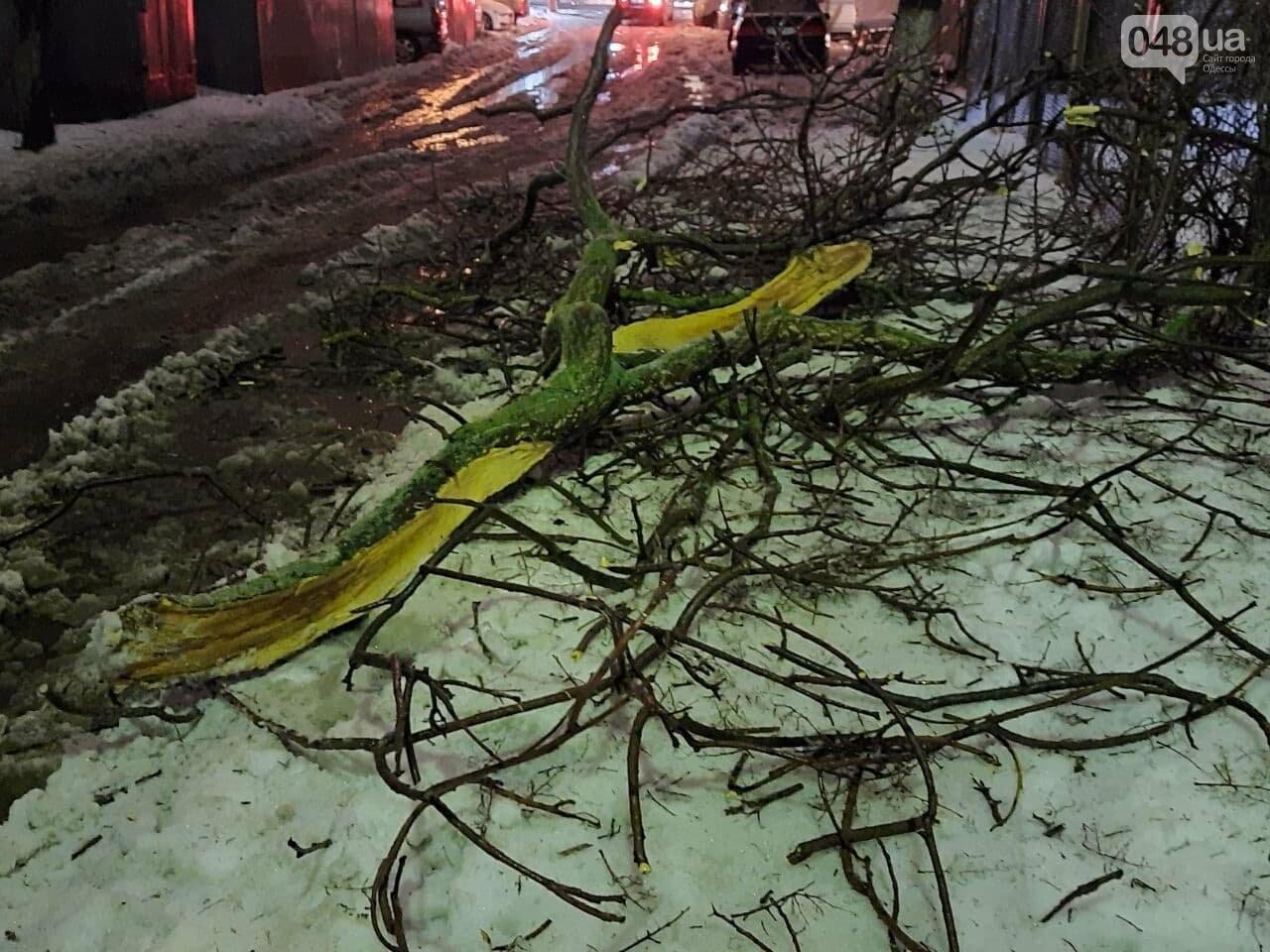 Едва не стала роковой: в Одессе под весом снега обломилась..., фото-11
