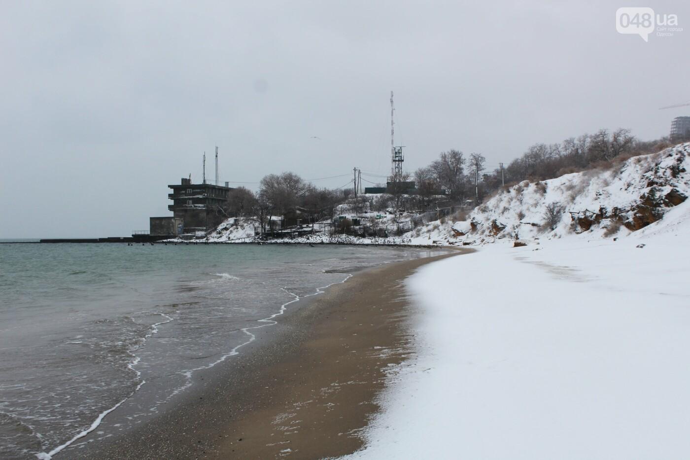В Одессе побережье засыпало снегом: утки, котики и море, - ФОТОРЕПОРТАЖ, фото-3
