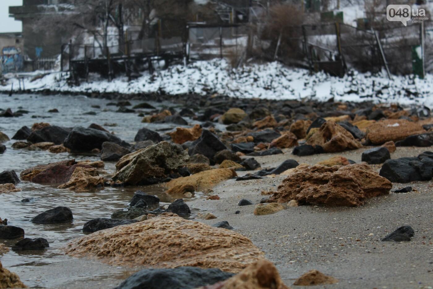 В Одессе побережье засыпало снегом: утки, котики и море, - ФОТОРЕПОРТАЖ, фото-4