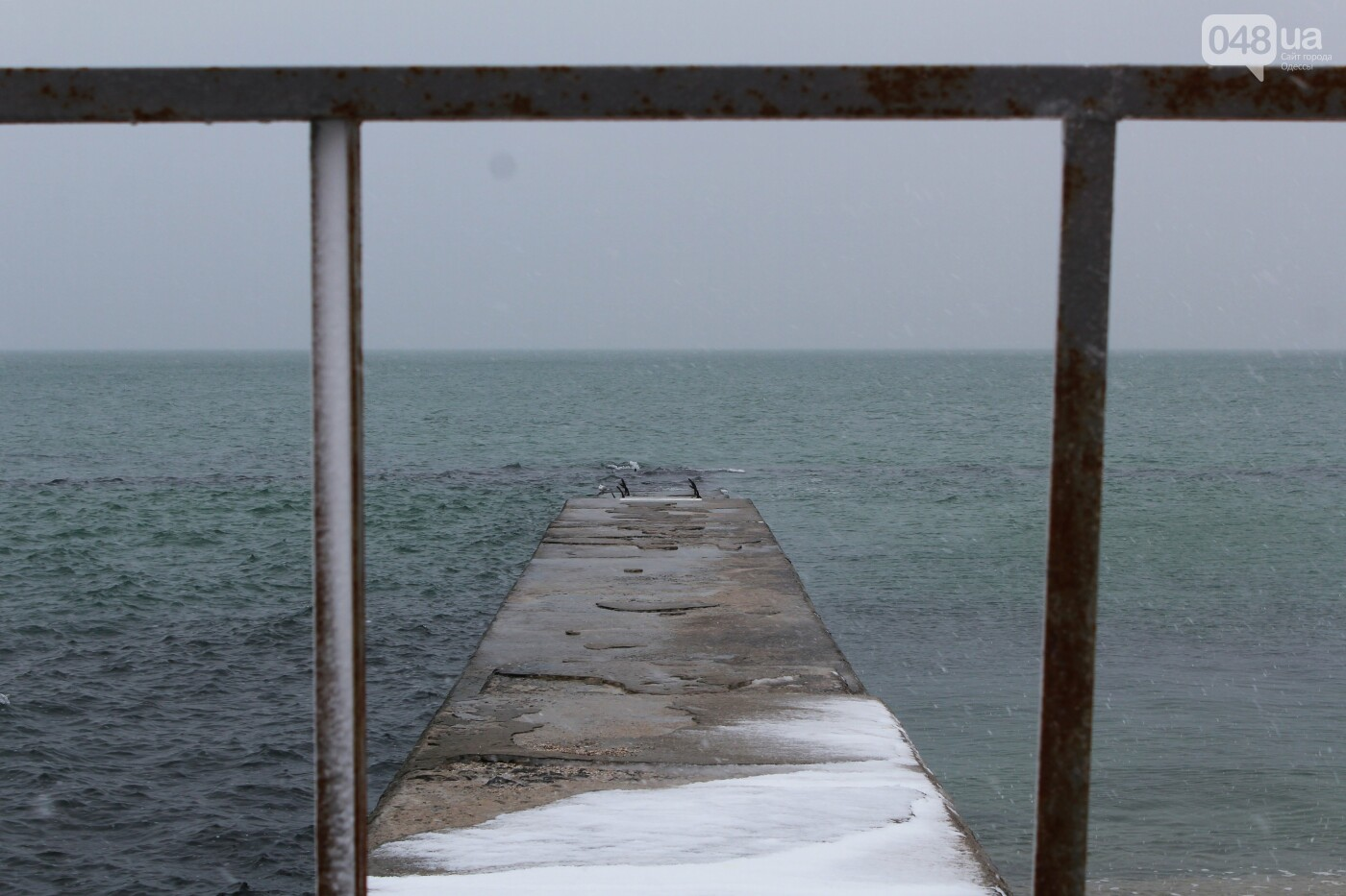 В Одессе побережье засыпало снегом: утки, котики и море, - ФОТОРЕПОРТАЖ, фото-8
