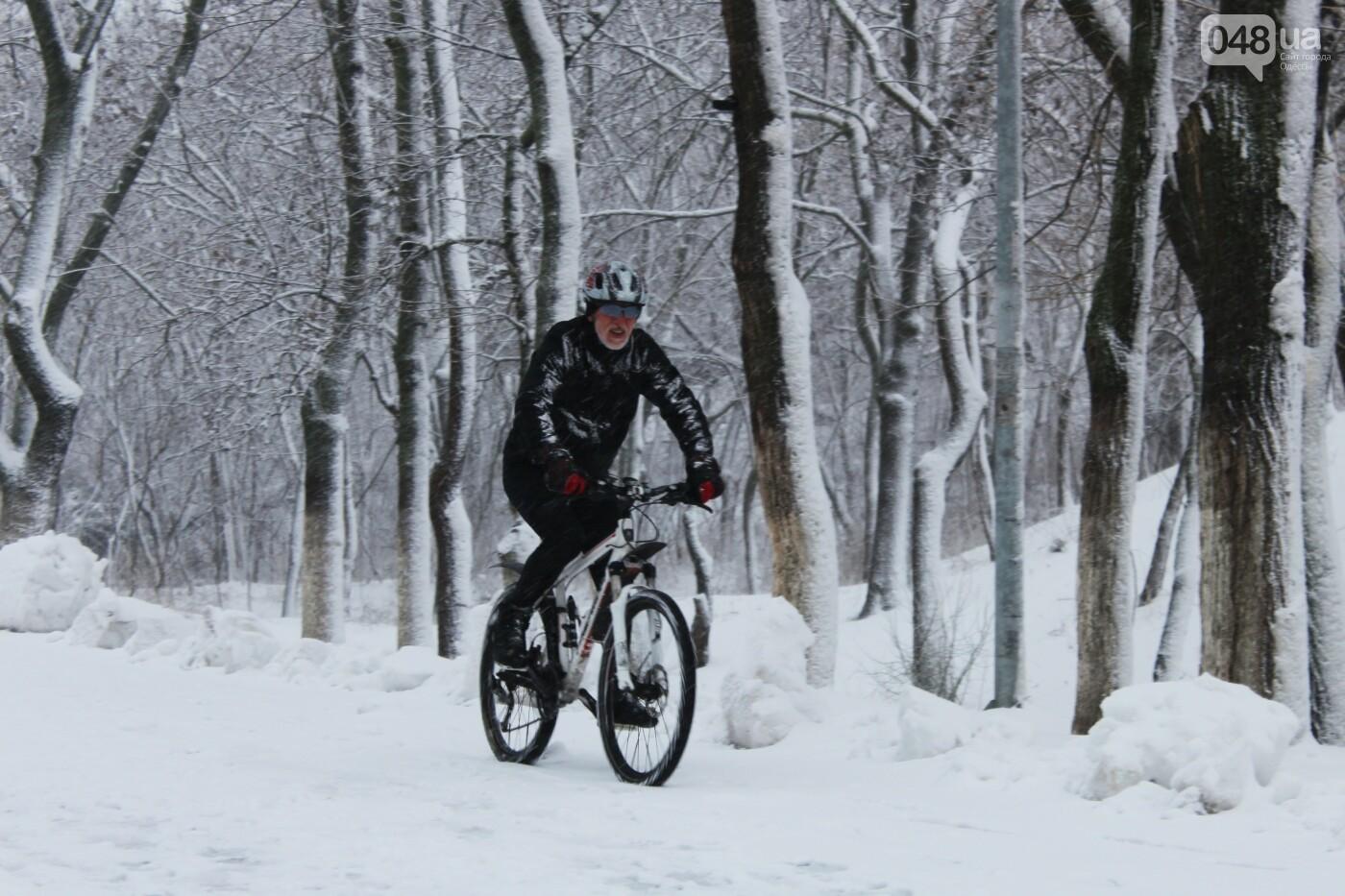 В Одессе побережье засыпало снегом: утки, котики и море, - ФОТОРЕПОРТАЖ, фото-16