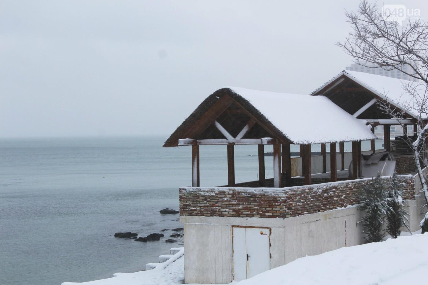 В Одессе побережье засыпало снегом: утки, котики и море, - ФОТОРЕПОРТАЖ, фото-29