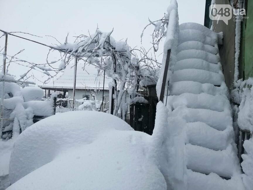 Сугробы выше крыши: жители Одесской области откапываются,-..., фото-77