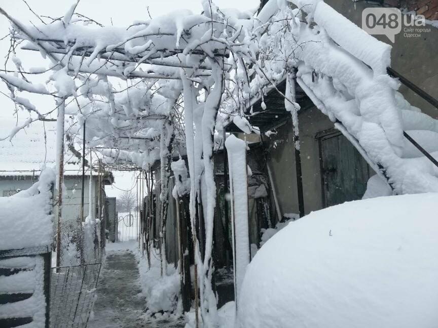 Сугробы выше крыши: жители Одесской области откапываются,-..., фото-88