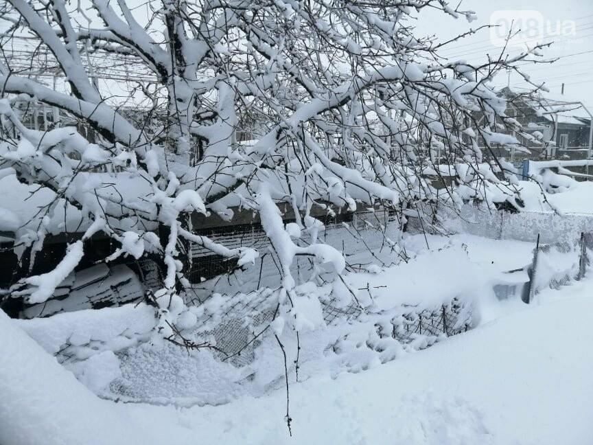 Сугробы выше крыши: жители Одесской области откапываются,-..., фото-44